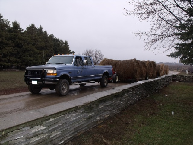Rainy day on Monday bought hay for a tad bit cheaper.  Not much though:)  Staw also for the barn dance.