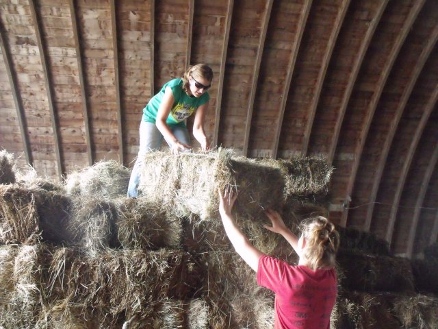 Unloading the bales for seating.