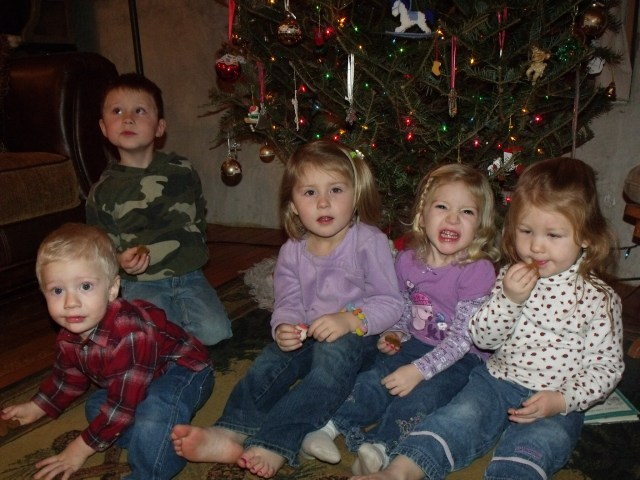 Sweet grandchildren, the next generation!