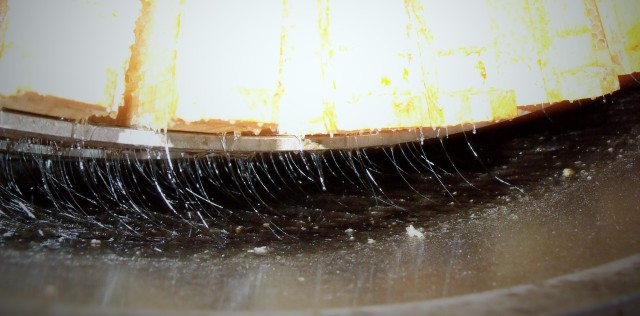 Beautiful honey being extracted. Light and delicious!