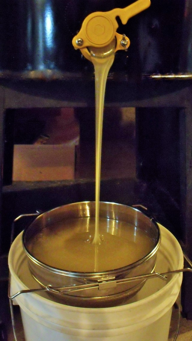 The honey gate is opened and the raw honey is filtered.