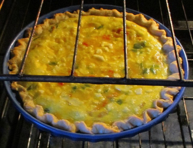This Quiche was delicious.  Eggs, onions, milk, cheese etc.  Wow!