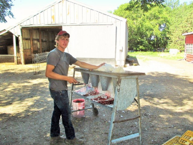 Caleb handles the worst part of chicken butchering for us!  We borrowed this unit from the Fonders.