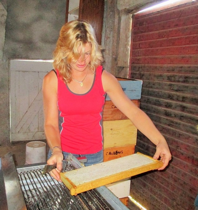 Here Silvana is placing a full frame of honey onto the uncapping machine.